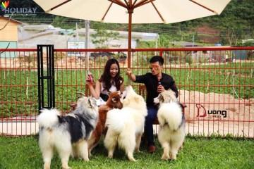 Puppy Farm – Nông Trại Cún Đáng Yêu Vô Đối Ở Đà Lạt