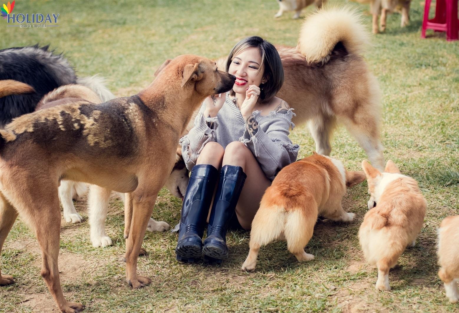 puppy farm đà lạt